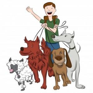 Dog walker Blog July 2013