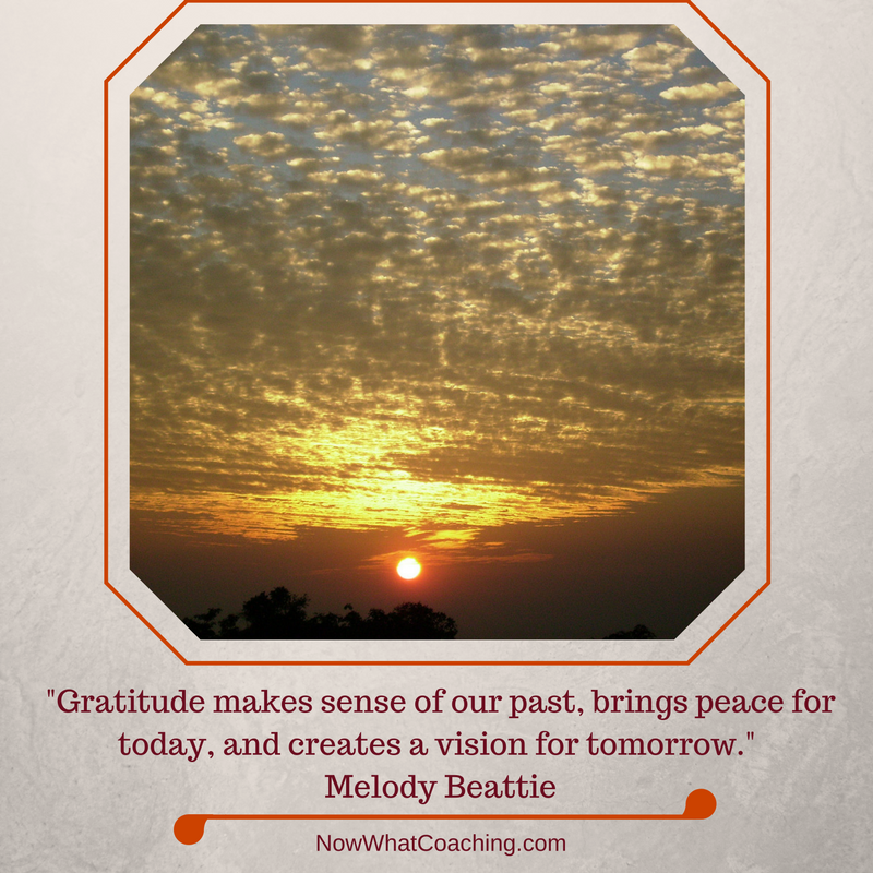 """Gratitude makes sense of our past, brings peace for today, and creates a vision for tomorrow.""  Melody Beattie"