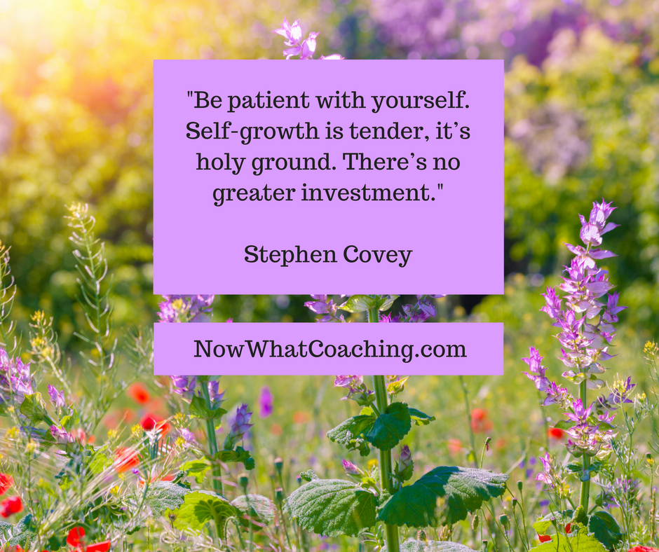 Be patient with yourself. Self-growth is tender, it's holy ground. There's no greater investment. -- Stephen Covey