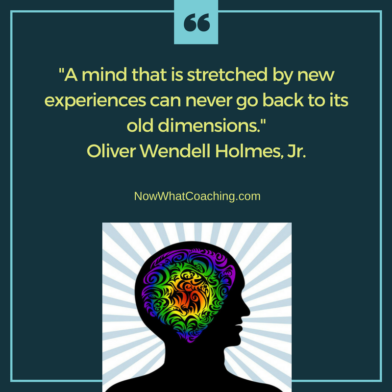 A mind that is stretched by new experiences can never go back to its old dimensions. Oliver Wendell Holmes, Jr.