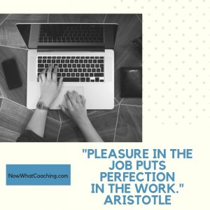 """""""Pleasure in the job puts perfection in the work."""" Aristotle"""